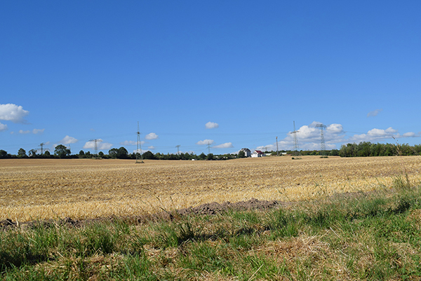 Landschaft in Mockritz