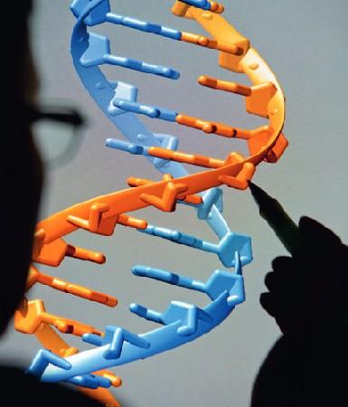 Dresdner Forscher lernen von der Natur: DNA-Befehle dienen ihnen als Baupläne für selbstkonstruierende Elektronik. Visualisierung: cfaed/ TUD