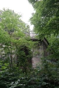 Wolfshügelturm auf dem Wolfshügel der Dresdner Heide
