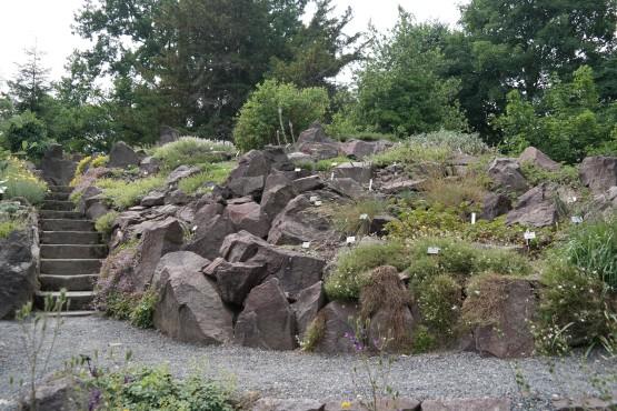 Alpinum im Botanischen Garten