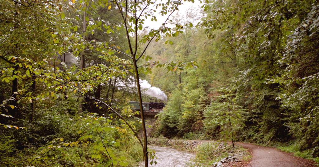Die Weißeritztalbahn im Rabenauer Grund – ein sehr beliebtes Verkehrsmittel