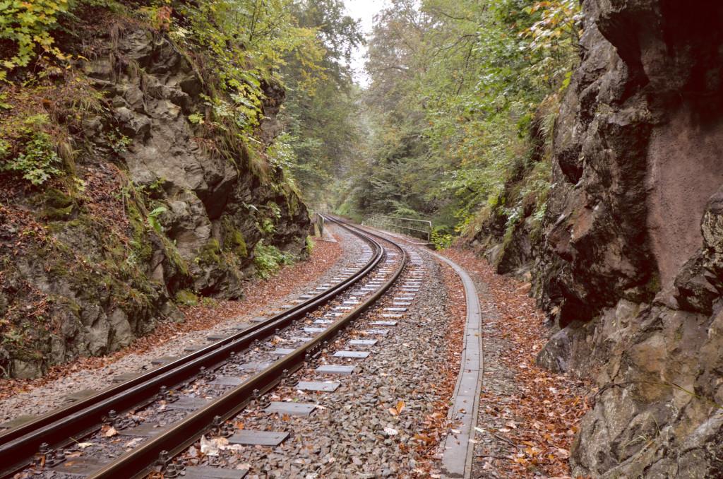 Auf geht's nach Dippoldiswalde mit der Weißeritztalbahn