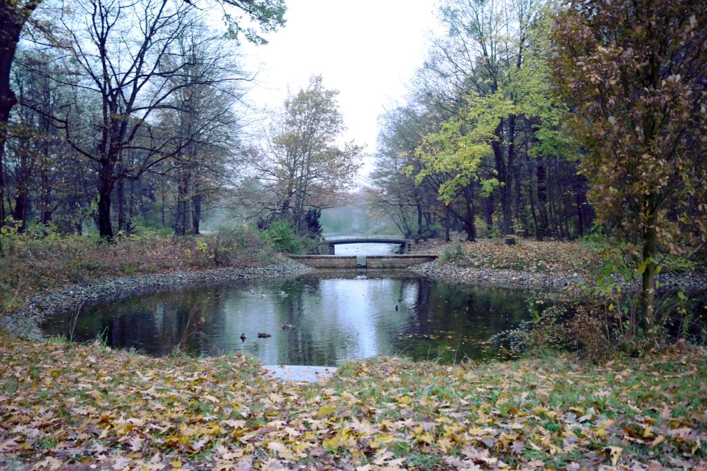 Der Große Garten befindet sich in unmittelbarer Nähe