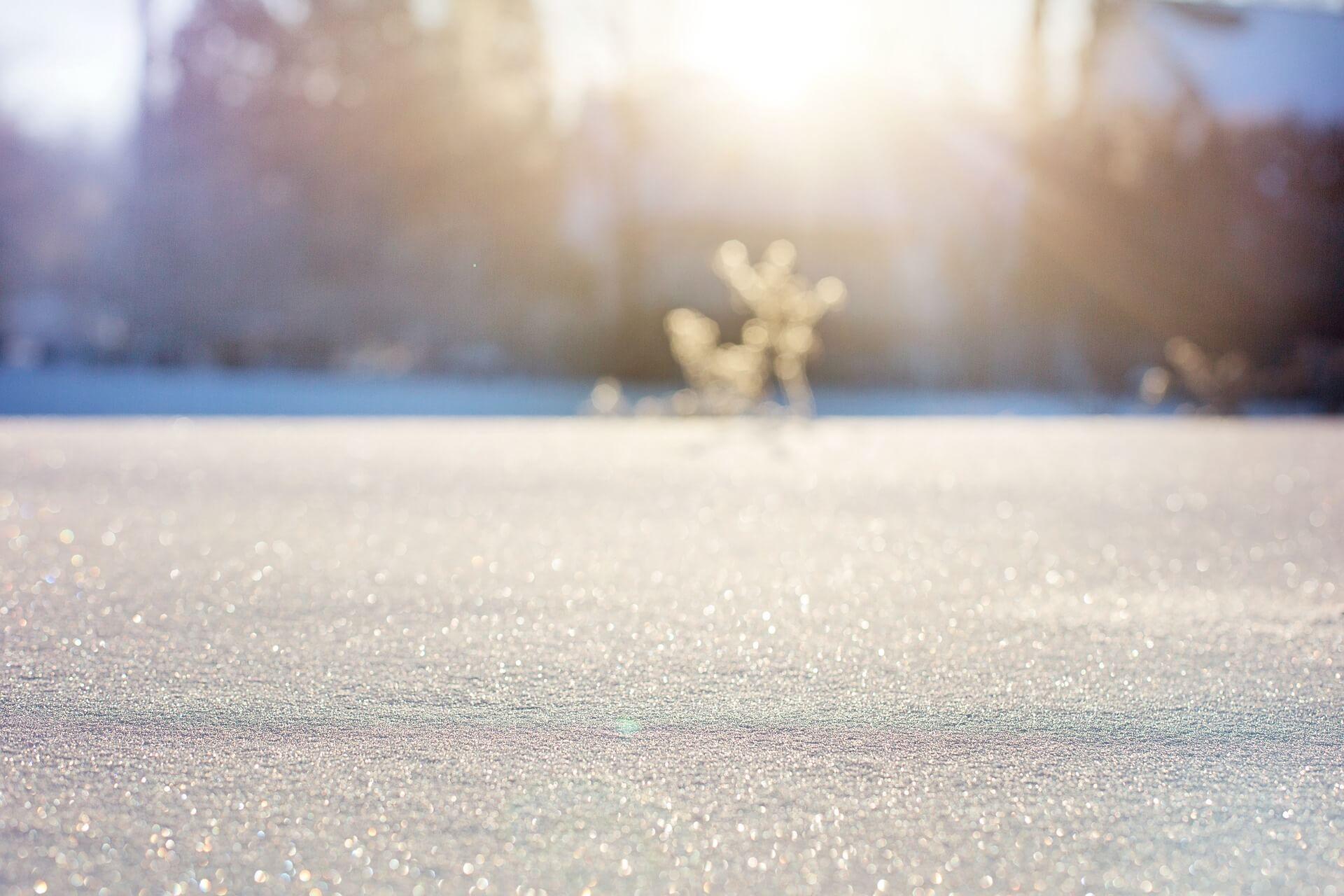 Raus in den Schnee!