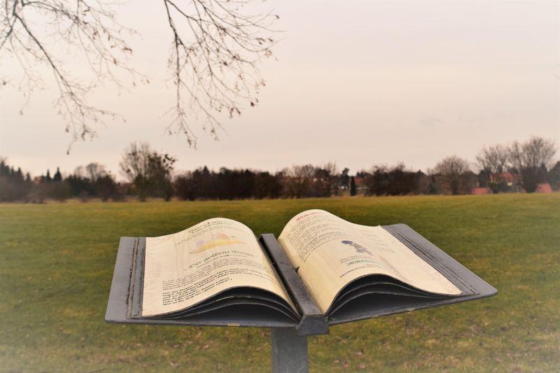 Märchenbücher laden zu einer Fantasie Reise ein