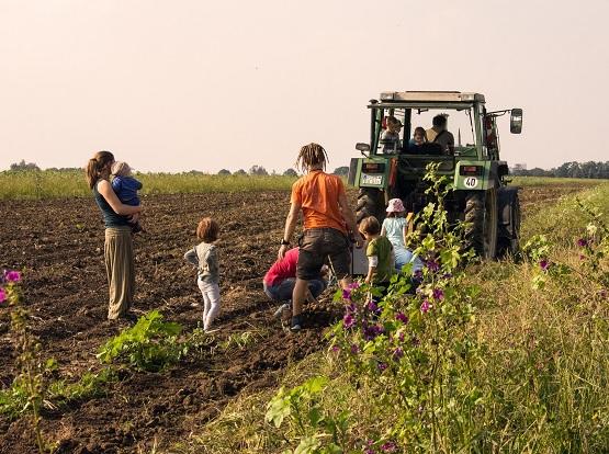 Alle gemeinsam bei der Kartoffelernte auf dem Schellehof. | Foto: C.Förster