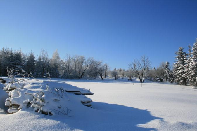Hoffentlich erwartet uns bald auch ein solcher Schnee.