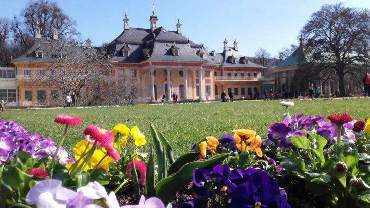 Das Schloss Pillnitz.