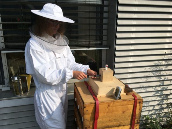 Dank des Imkervereins Dresden konnten die Forscher der TU Dresden die Luft der Bienenstöcke erstmals intensiver untersuchen. | Bild: TU Dresden/ Cindy Henker