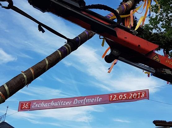 Am Freitag startet die 36. Zschachwitzer Dorfmeile. 42 Events finden an den zwei Tagen beim Stadtteilfest statt. | Bild: Zschachwitzer Dorfmeile e.V.