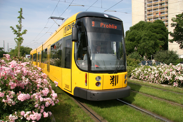 ©DVB – Achte die nächste Zeit auf die Schienen in Dresden. Du wirst oft den grünen Rasen bemerken!