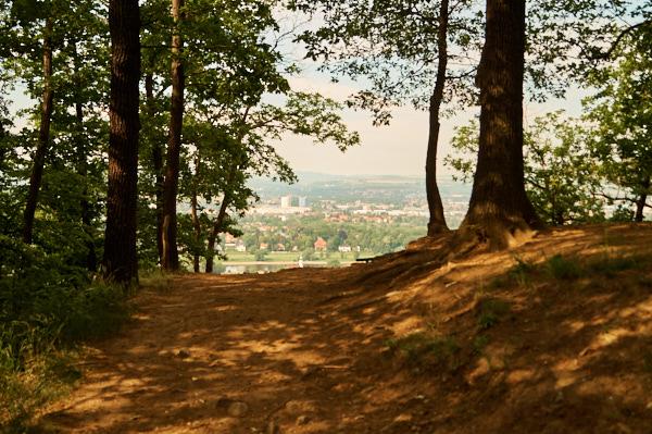 Weg zum Zuckerhut in Stadtteil Dresden Hosterwitz